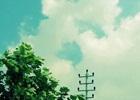 甄子丹2013年动作《特殊身份》HD1280高清国语中英双字在线播放_百度影音